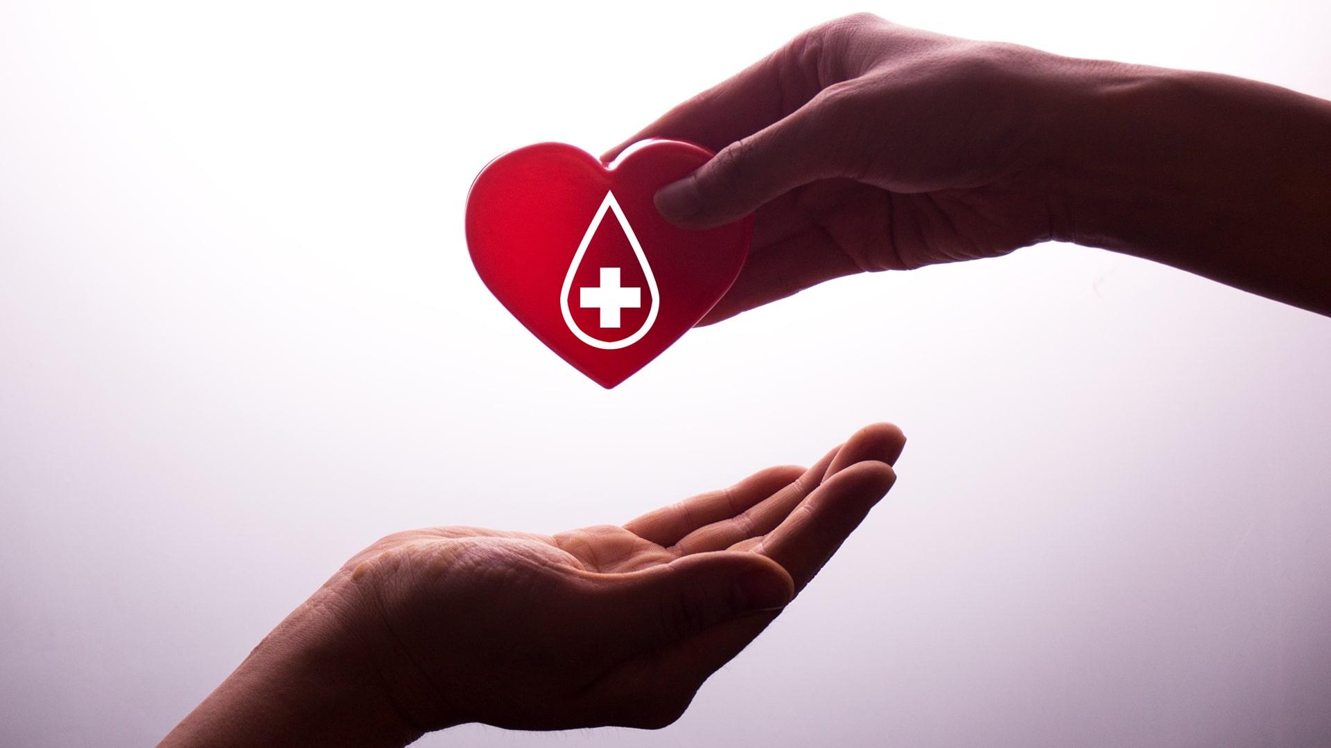 Cuántos litros de sangre tiene el cuerpo humano
