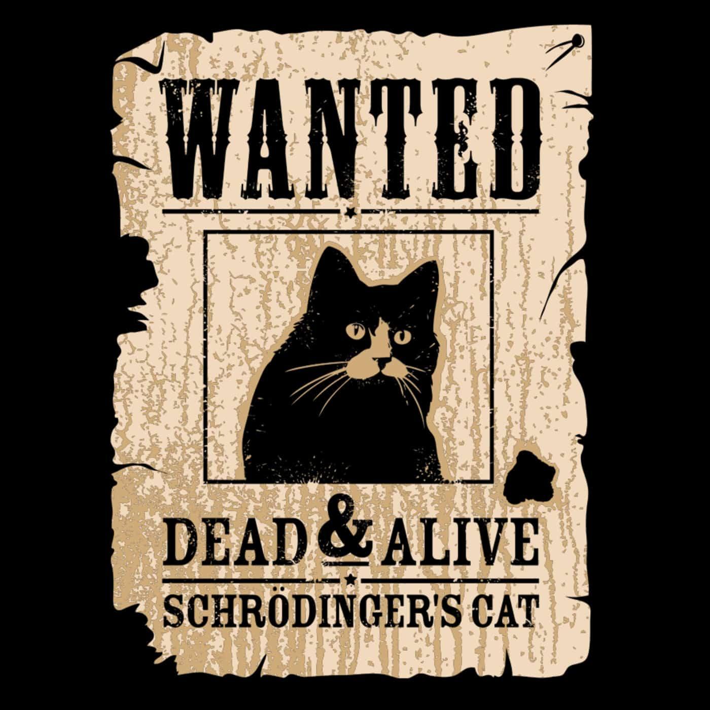 el gato de Schödinger