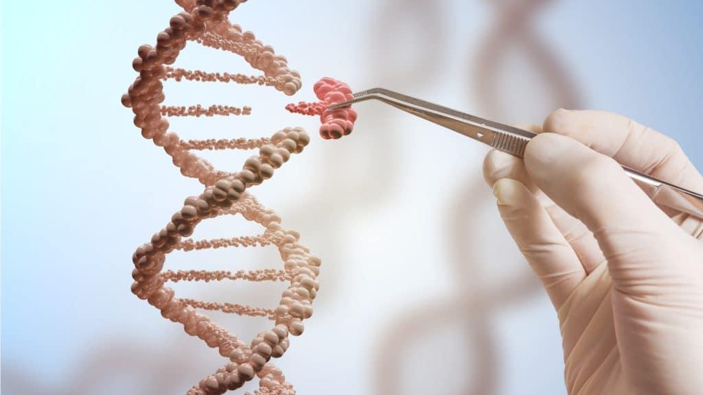 Extracción de ADN Casero