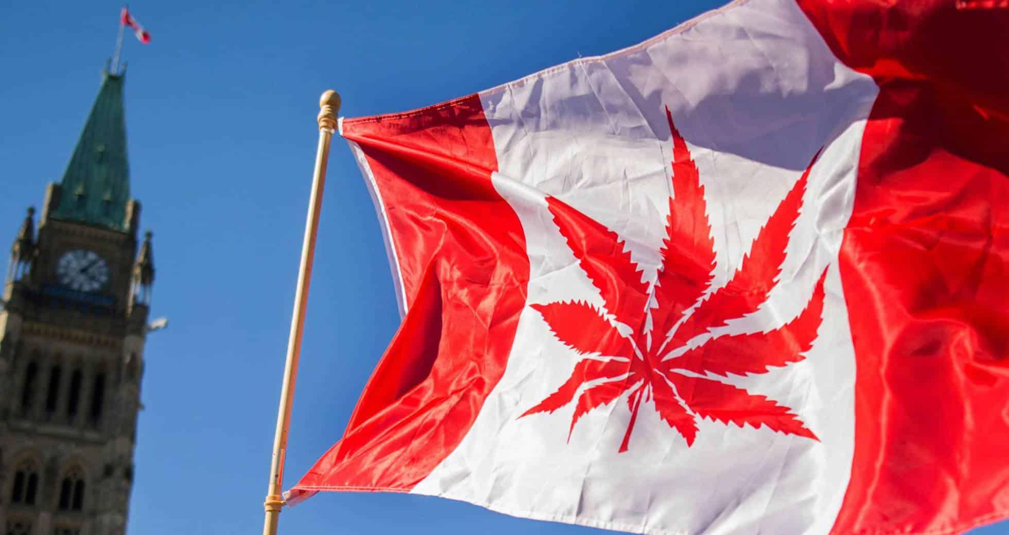 Efectos positivos de la marihuana