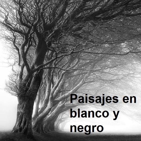 Paisajes en blanco y negro